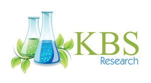 KBS Research Logo